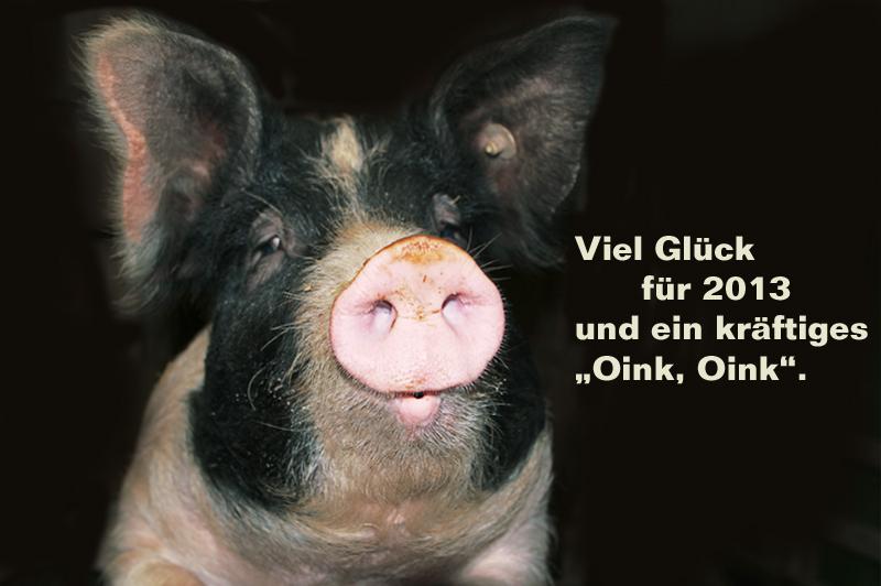 """""""Schluss mit der Sauerei – Schweine sind nicht nur Wurst!"""""""